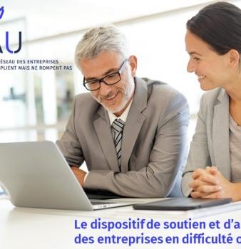 ROSEAU : Dispositif d'appui et de soutien aux entreprises en difficulté